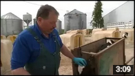 Dehorning: A Humane Practice Focused on Cow Safety